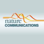 Novel findings explain indirect regulation of glucose homeostasis